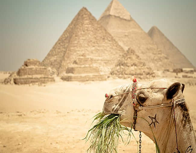 Cairo Short Break Cairo Stopover Package